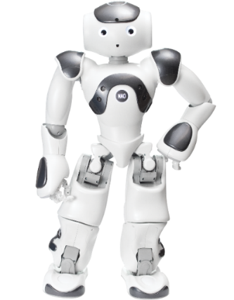 Image result for NAO robot